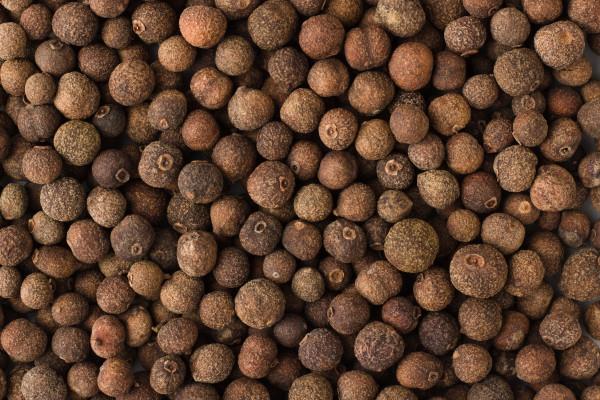 Piment Ganz, Type Jamaica, Keimreduziert, 500g